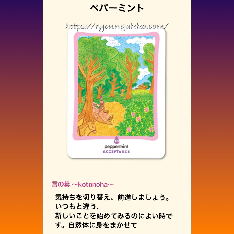 【アロマカード】ペパーミント『リセット』