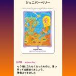 【アロマカード】 ジュニパーベリー 『 啓示・決断 』
